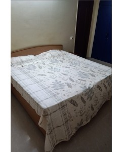 Pure Cotton Double Bedsheet with 2 Pillow Covers (Pastel)